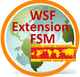 Dynamique Extension FSM 2016/17 WSF